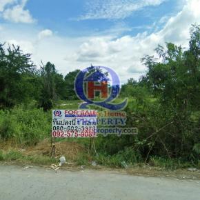 ที่ดินสวย 1ไร่ 2งาน ชุมชนบ้านไร่-หนองกาน้ำ ซ9 อบต.หนองหงส์ อำเภอพานทอง ชลบุรี